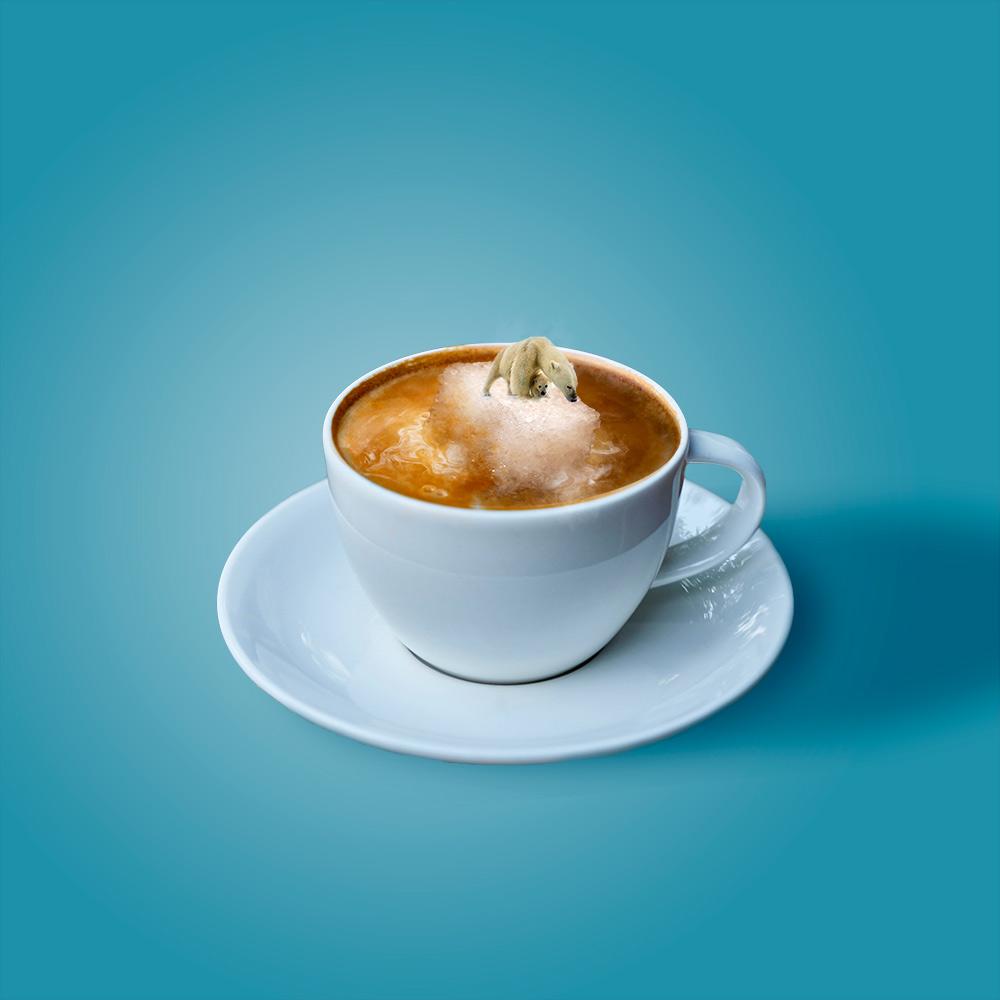 Fotomontaggio tazza di caffè e orso polare
